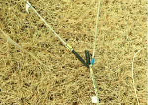 used-kite09